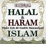 BÀI VIẾT VÀ AUDIO: PHÂN TÍCH HADITH SỐ 6 CỦA 40 HADITH NAWAWIYAH - HALAL VÀ HARAM