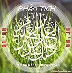 BÀI VIẾT VÀ AUDIO: PHÂN TÍCH HADITH SỐ 25 ĐẾN 28 CỦA 40 HADITH NAWAWIYAH