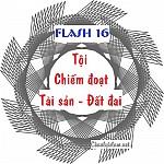 FLASH 16 - TỘI CHIẾM ĐOẠT TÀI SẢN - ĐẤT ĐAI