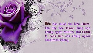 HỌC ISLAM KHÔNG HỌC MUSLIM