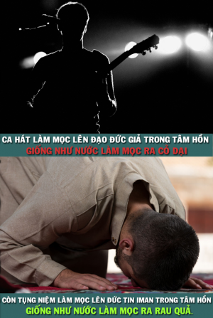 CA HAT & TUNG NIEM?