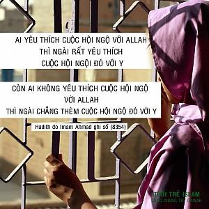 HADITH CỦA IMAM AHMAD SỐ 8354