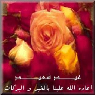 NĂM CÂU CHUYỆN NGẮN ISLAM (1)