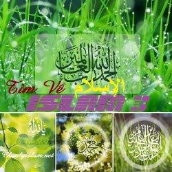 TÌM VỀ ISLAM (Phần 3)