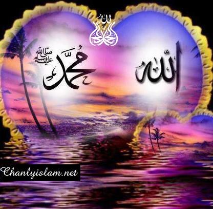 NHÌN VÀO HỒNG PHÚC HIỆN THỰC ĐỂ TẠ ƠN ALLAH VÀ THƯƠNG YÊU THIÊN SỨ MUHAMMAD (SAW)