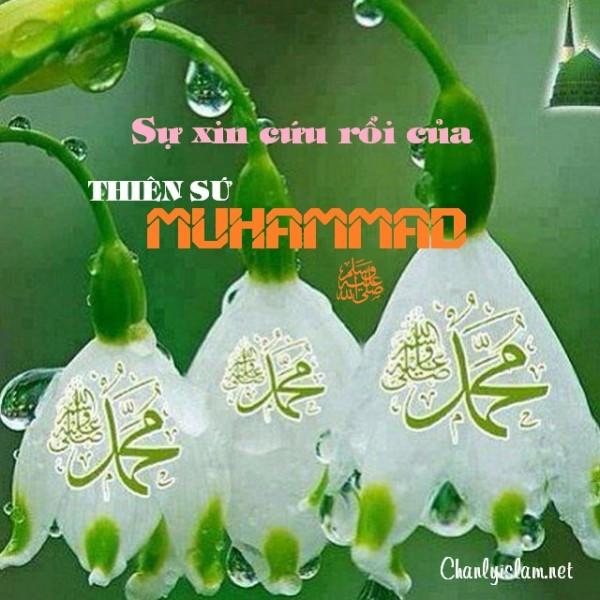 SỰ XIN CỨU RỖI CỦA THIÊN SỨ MUHAMMAD (SAW)
