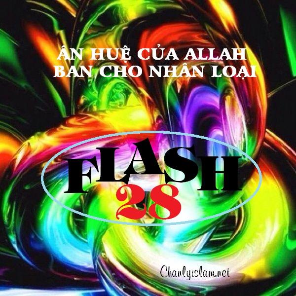FLASH 28: ISLAM - LÀ MỘT ÂN HUỆ CỦA ALLAH BAN CHO NHÂN LOẠI