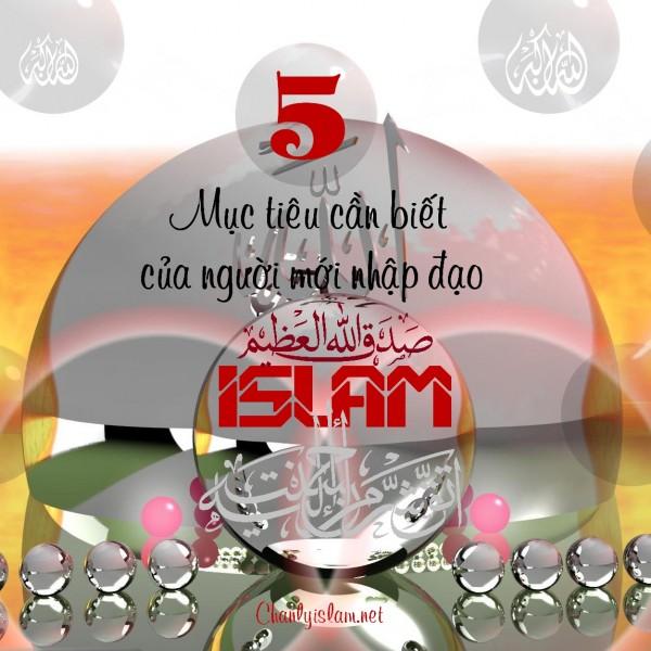 """BÀI VIẾT VÀ THUYẾT GIẢNG AUDIO: """"5 MỤC TIÊU CẦN BIẾT CỦA NGƯỜI MỚI NHẬP ĐẠO ISLAM"""""""